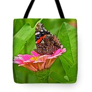 Red Admiral Butterfly And Zinnia Flower Tote Bag