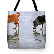 Red And Blue Heelers Tote Bag