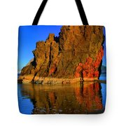 Red And Gold In The Sea Tote Bag