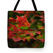 Red And Green Autumn Leaves Tote Bag