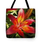 Red And Orange Lilly In The Garden Tote Bag