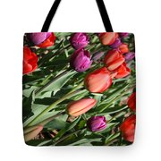Red And Purple Tulips Tote Bag