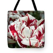Red And White 6393 Tote Bag