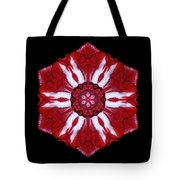 Red And White Amaryllis Iv Flower Mandala Tote Bag