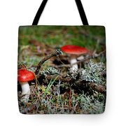 Red And White Mushrooms Tote Bag