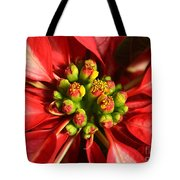 Red And White Poinsettia Flower Tote Bag by Catherine Sherman