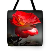 Red And White Rose Tote Bag