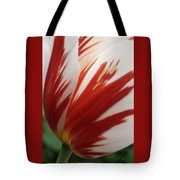 Red And White Tulip  Tote Bag