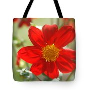 Red And Yellow Beauty Tote Bag