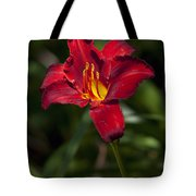 Red And Yellow Daylily  Tote Bag