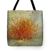 Red And Yellow Desert Color Tote Bag
