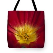 Red And Yellow Poppy 1 Tote Bag