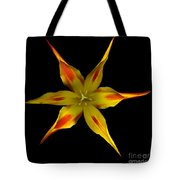 Red And Yellow Spiked Tulip Tote Bag