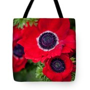 Red Anemone. Flowers Of Holland Tote Bag