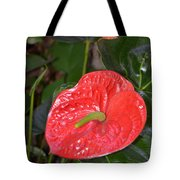 Red Anthurium Flower Tote Bag
