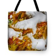 Red Autumn Maple Leaves With Fresh Fallen Snow Tote Bag