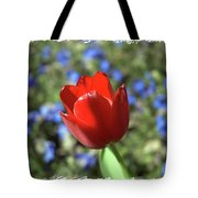 Red Baby Tote Bag