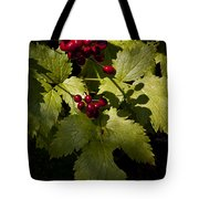 Red Baneberry   #8955 Tote Bag