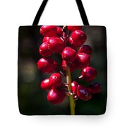 Red Baneberry   #8986 Tote Bag