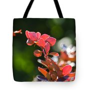 Red Barberry Tote Bag