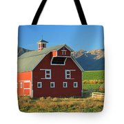 Dn5939-red Barn In The Wallowas Tote Bag