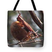 Red Bat Roost Tote Bag