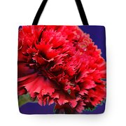Red Beauty Carnation Tote Bag