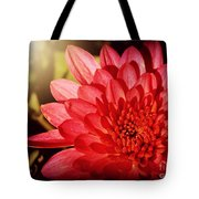 Red Beauty Welcomes The Sun - Flowers Of Summer Tote Bag