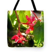 Red Begonia Peaking Through The Leaves Tote Bag