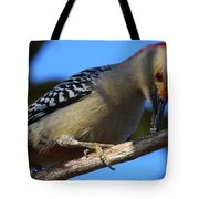 Red-bellied Woodpecker Catching Grub Tote Bag