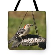 Red Bellied Woodpecker - Melanerpes Carolinus Tote Bag