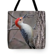 Red Bellied Woodpecker Pose Tote Bag