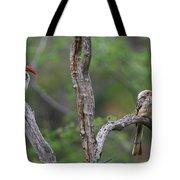 Red-billed Hornbills Tote Bag
