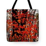 Red Blaze Burst Tote Bag