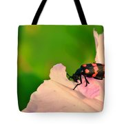 Red Blister Beetle Tote Bag