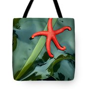 Red Bloodstar Tote Bag