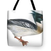 Red-breasted Merganser Tote Bag by Anonymous