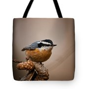 Red-breasted Nuthatch Pictures 36 Tote Bag