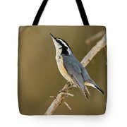 Red-breasted Nuthatch Pictures 76 Tote Bag
