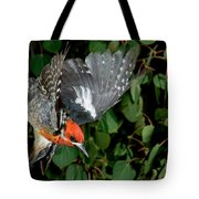 Red-breasted Sapsucker Tote Bag