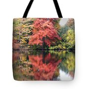 Red Burst Tote Bag