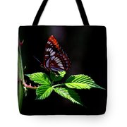 Red Butterfly Tote Bag