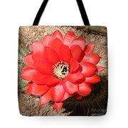 Red Cactus Flower Square Tote Bag