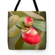 Red Camelia Buds Tote Bag