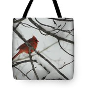 Red Cardinal On Snow Covered Tree Limb Tote Bag