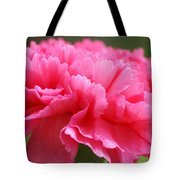Red Carnation  Tote Bag