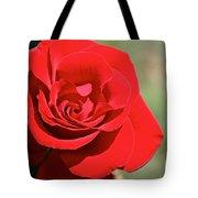 Red Carpet Rose Tote Bag