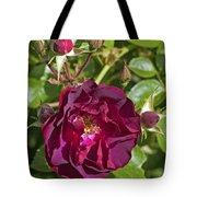 Red Climbing Rose Tote Bag