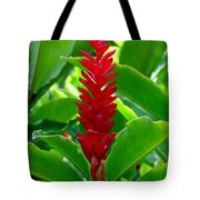 Red Cone Ginger Tote Bag