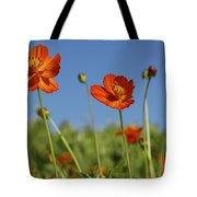 Red Cosmos Flower Tote Bag